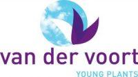 van-der-voort-youngplants-bv-b2b1d-logo