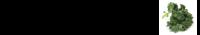 stamppotboerenkool-logo